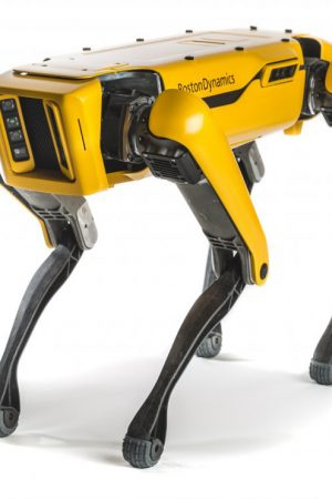 boston-dynamics-spot